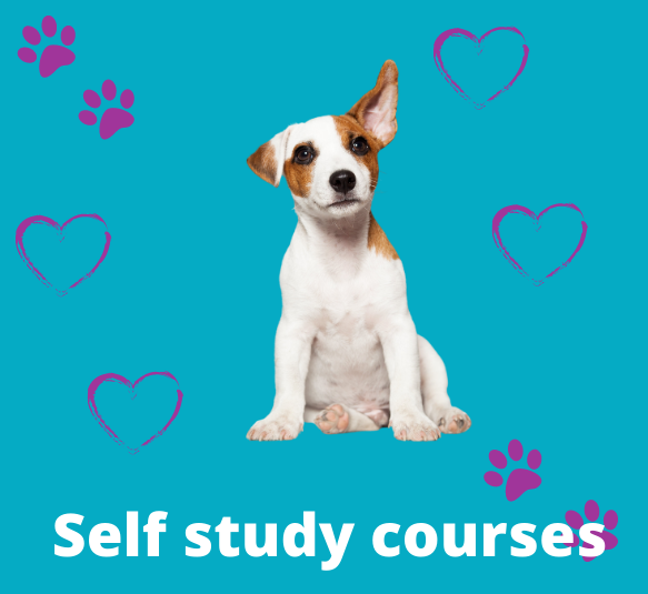 Self study courses